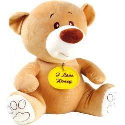 Medvídek 38 cm